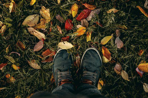 Herfst en winterperiode vraagt voor preventie